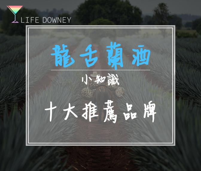 龍舌蘭酒介紹首頁圖